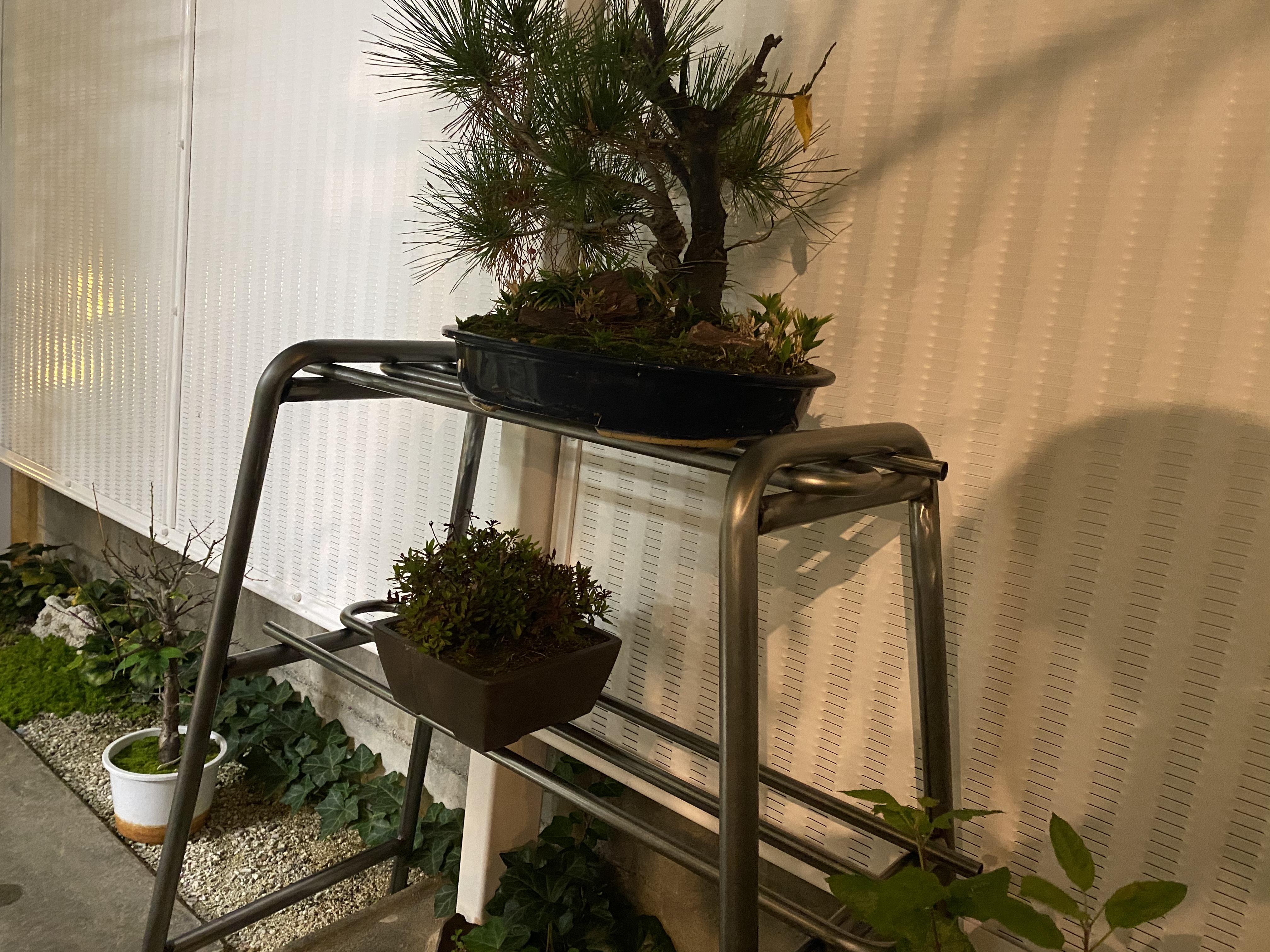 ガーデニング おしゃれなオリジナル盆栽棚